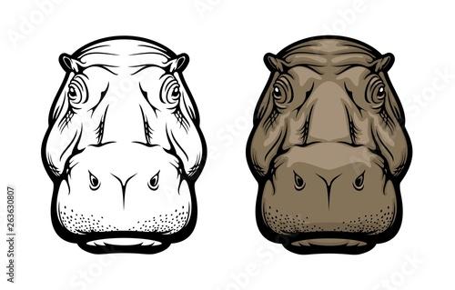 Obraz na plátne Hippopotamus, hippo wild African animal face icon