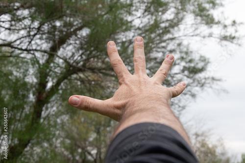 Photo Mano abierta de hombre extendida hacía el cielo