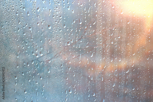 Obraz background wet glass drops autumn in the park / view of the landscape in the autumn park from a wet window, the concept of rainy weather on an autumn day - fototapety do salonu