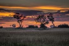 Sunrise Over The Okavango Delta In Botswana Africa
