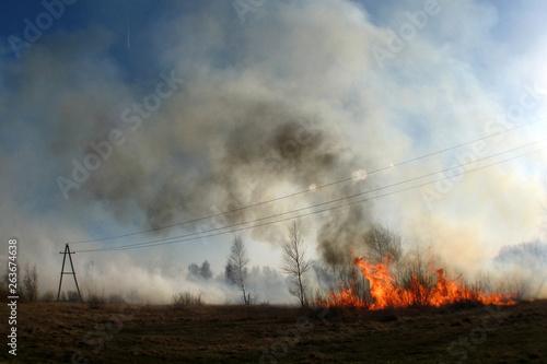 Photo  Burning of straw on the field smoke, fire
