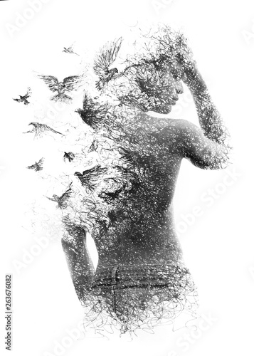Fototapeta Paintography. Double exposure of a shirtless male model combined with handmade pen drawing of birds flying away and disintegrating, black and white obraz