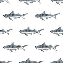 Tiger Shark Character Abstract...