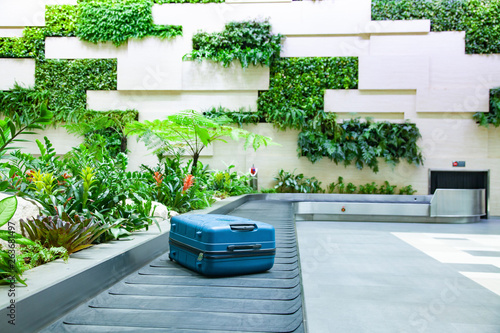 Fototapeta  suitcase on a conveyor belt surrounded by green tropical plants in a baggage cla