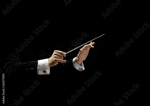 Canvastavla  Hands of conductor on a black background