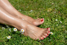 Woman Bare Feet On Spring Gras...