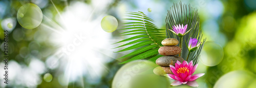 Garden Poster Lotus flower stones and lotus on green background