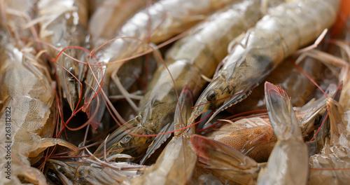 Stack of fresh shrimp Fototapet