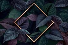 Forest Leaf Frame