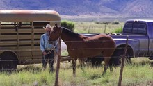 Old Cowboy Rancher Standing Wi...