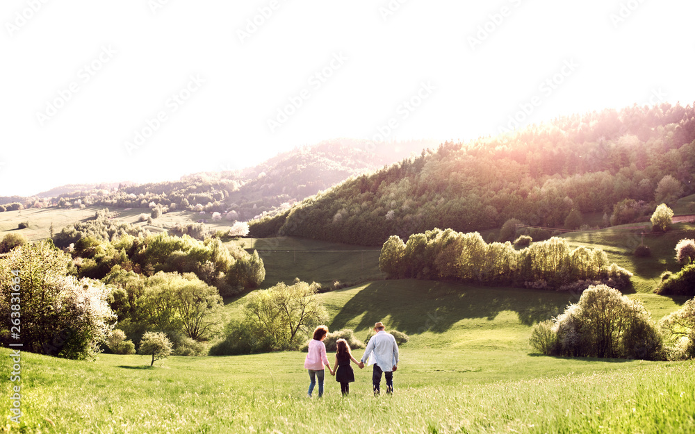 Fototapety, obrazy: Rear view of senior couple with granddaughter on a walk outside in spring nature.