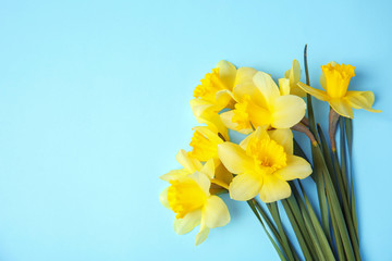 Bouquet of daffodils on color background, top view with space for text. Fresh spring flowers