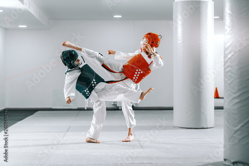Sporty Caucasian boys having taekwondo training in white gym and kicking each other Tapéta, Fotótapéta