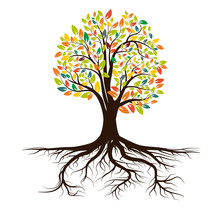 Life Tree With Roots , Vector.