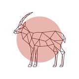 Polygonal antelope silhouette. Geometric antelope side view. Vector illustration. - 263876819
