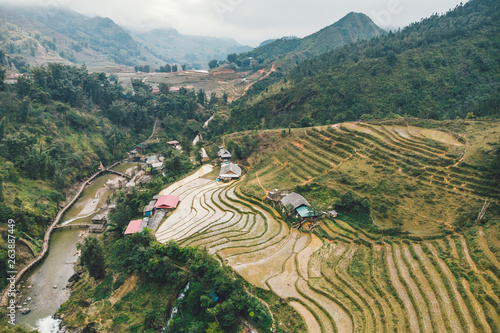 Fotografie, Obraz  Aerial view of green terraced rice fields and building on the valley at Cat Cat