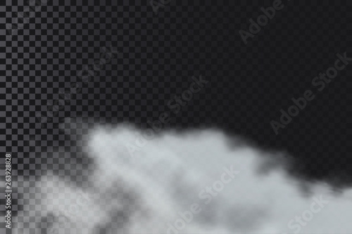 Garden Poster Smoke Smoke or fog on transparent background. Realistic clouds of smoke or smog. Vector illustration.