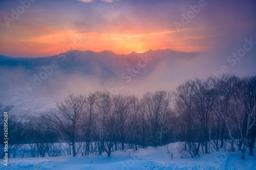 Photo Stands Trees Sunset view on the top of Moiwa mountain in winter snow