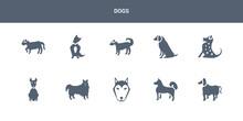10 Dogs Vector Icons Such As Afghan Hound Dog, Akita Dog, Alaskan Klee Kai Dog, American Eskimo American Hairless Terrier Contains American Leopard Hound Water Spaniel Anatolian Shepherd Austrailian
