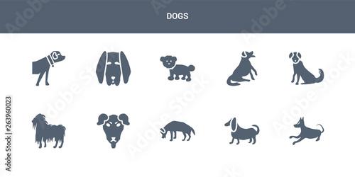 10 dogs vector icons such as basenji dog, basset hound dog, beagle dog, beaucero Wallpaper Mural