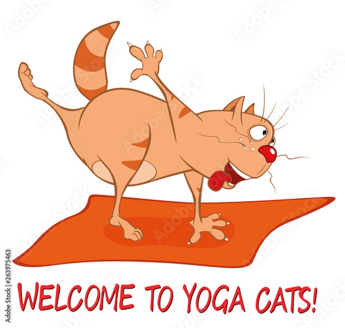 Poster de jardin Chambre bébé Essential Yoga Poses for Cats. Vector Illustration of a Cute Cat. Cartoon Character