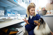 Young Woman Taking Food For A Dog From Shelf In Veterinary Surgery