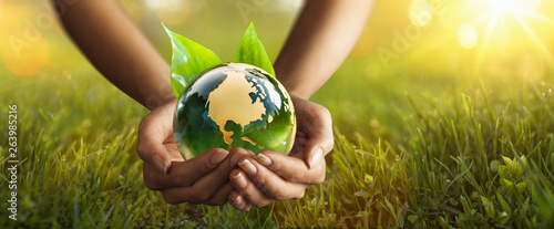 Aluminium Prints Equestrian Green Planet in Your Hands. Environment Concept