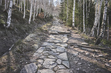 Hiking Stone Path In A Mountai...