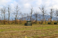 Hunting Lodge For Migratory Birds