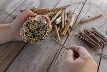 Do It Yourself Insect Hotel Made From Hollow Plant Stalks