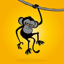 Angry Monkey Hanging On A Liana