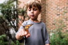 Monarch Butterfly Sitting On Boy's Hand As He Looks On In Wonder