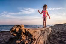Girl Balancing On Drift Wood Log At The Beach Looks Down