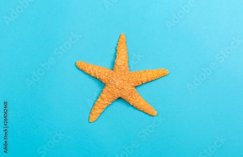 Fotografie, Obraz  A starfish on a blue paper background