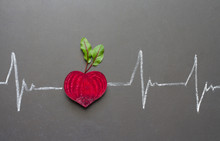 Healthy Beetroot With Heart Shape And Electrocardiogram On Blackboard