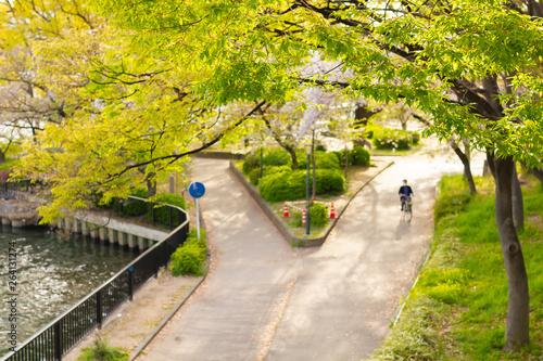 夏の街の散歩通り道