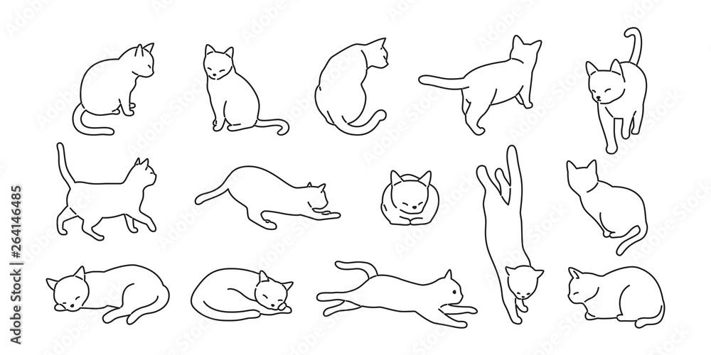 Fototapeta cat vector kitten icon logo cartoon character illustration doodle white