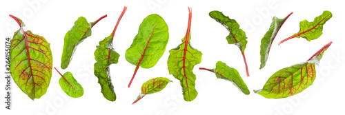 In de dag Verse groenten Flying sweet beet leafs(chard)