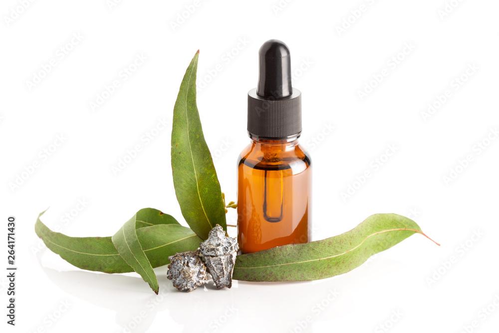 Fototapety, obrazy: Eucalyptus essential oil isolated on white background