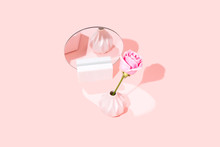 Pink Rose, Isolated With Copy Space