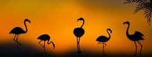 Vector Group Of Flamingo Silho...