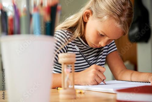 Photographie  Diligent schoolgirl doing homework