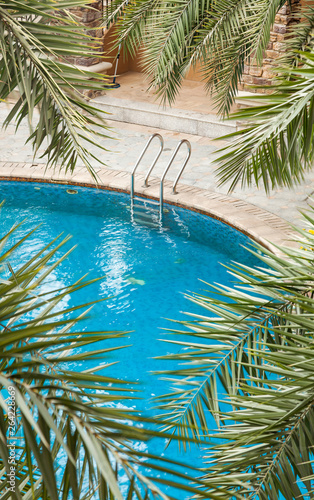 Swimming pools surrounded by palm trees and lush evergreen in a tropical plants Wallpaper Mural