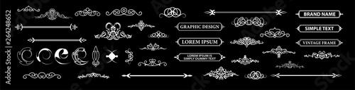 Photo Vintage set decor elements. Decoration for logo