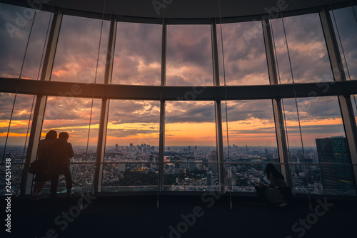 Rear view of Traveler looking Tokyo Skyline and view of skyscrapers on the observation deck at sunset in Japan Wallpaper Mural