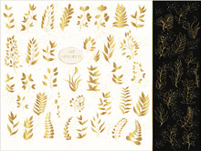Vector Set Of Gold Plants And ...