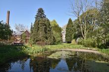 Jardin Botanique à Utrecht,