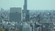 TOKYO, JAPAN - CIRCA APRIL 2019 : Aerial view of CITYSCAPE of TOKYO. View from Bunkyo ward. Zoom out shot.