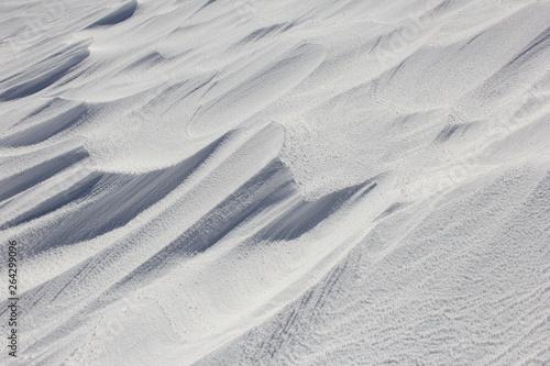 Valokuva  冬の風景/風紋のついた雪原(宮城県)
