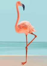 Hand Drawn Pink Flamingo